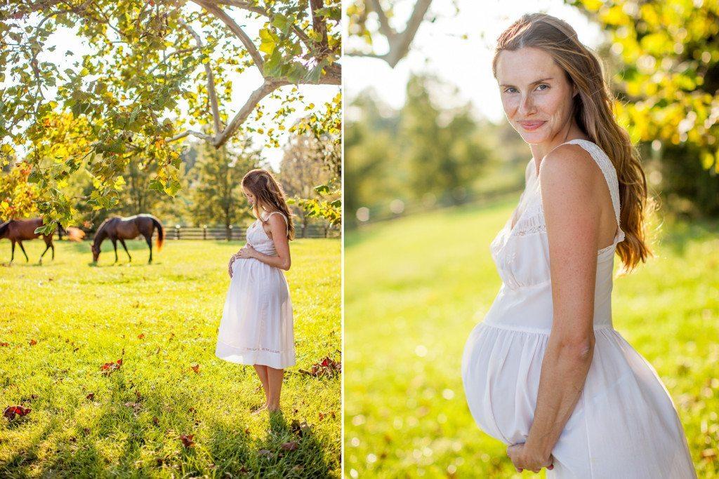 horse kentucky maternity