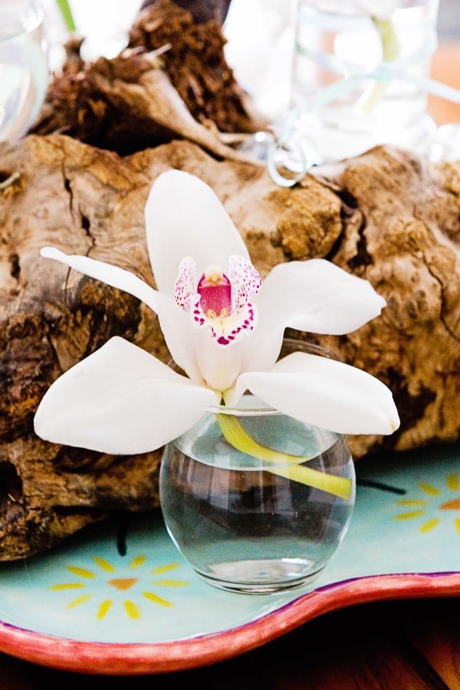 asianflower