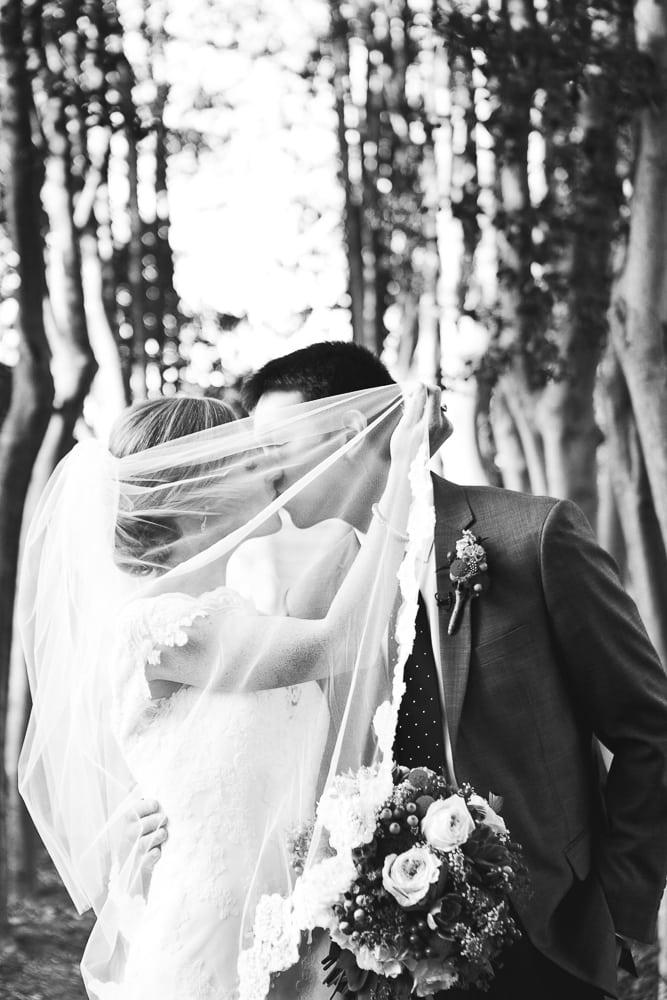 veilkissyewdellwedding